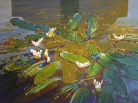 Autumn bolandlente - waterblommetjies by Starke, Helmut