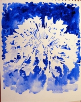 Agapanthus by MacKenny, Virginia