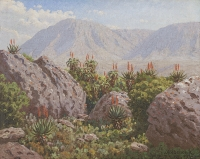 Amongs the rocks and aloes - Riversdale by Volshenk, Jan Ernst Abraham