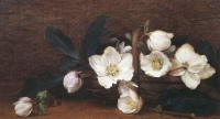 Christmas roses by Hayward, Alfred Frederick William