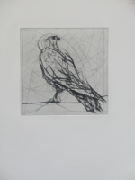 Magic Flute Portfolio - Bird by Kentridge, William