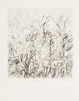 Aloes and Wild Grasses by Findlay, Bronwen