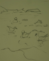 Ducks in water by Relly, Tamsin