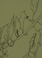 Leaves on branch by Relly, Tamsin