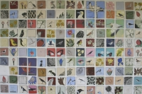 150 square blocks showing a variety of birds & plants by Unknown