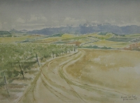 Vineyards near Paarl 1974 by Van Lingen, Gail