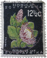 South African stamp - 12.5 C by Blake, Tamlin