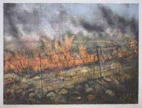 Through the Wire: Lowveld Fire I by Berman, Kim