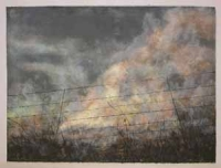 Through the Wire: Lowveld Fire III by Berman, Kim