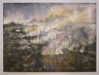 Through the Wire: Lowveld Fire II by Berman, Kim