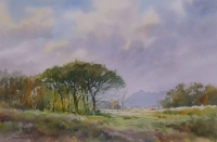 Landscape With Trees And Distant Mountains by Treasurey, Douglas