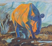 Orange Rhino by Quin, J